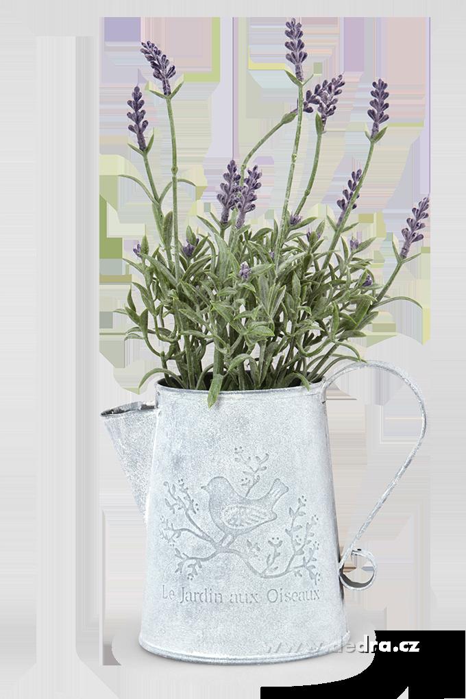 Dedra Levandulová dekorace plechová konvička
