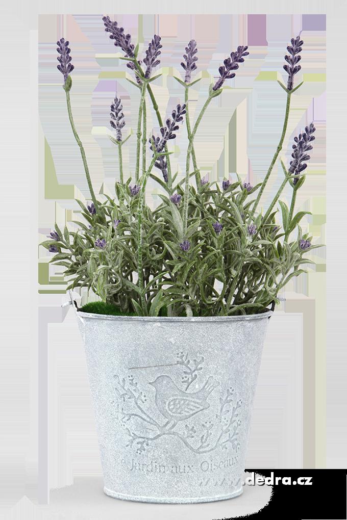 Dedra Levandulová dekorace plechový kyblík