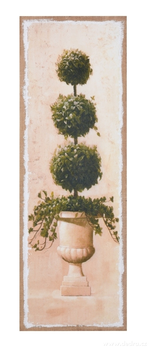 Dedra Obraz na jutovém plátně Buxus kulatý