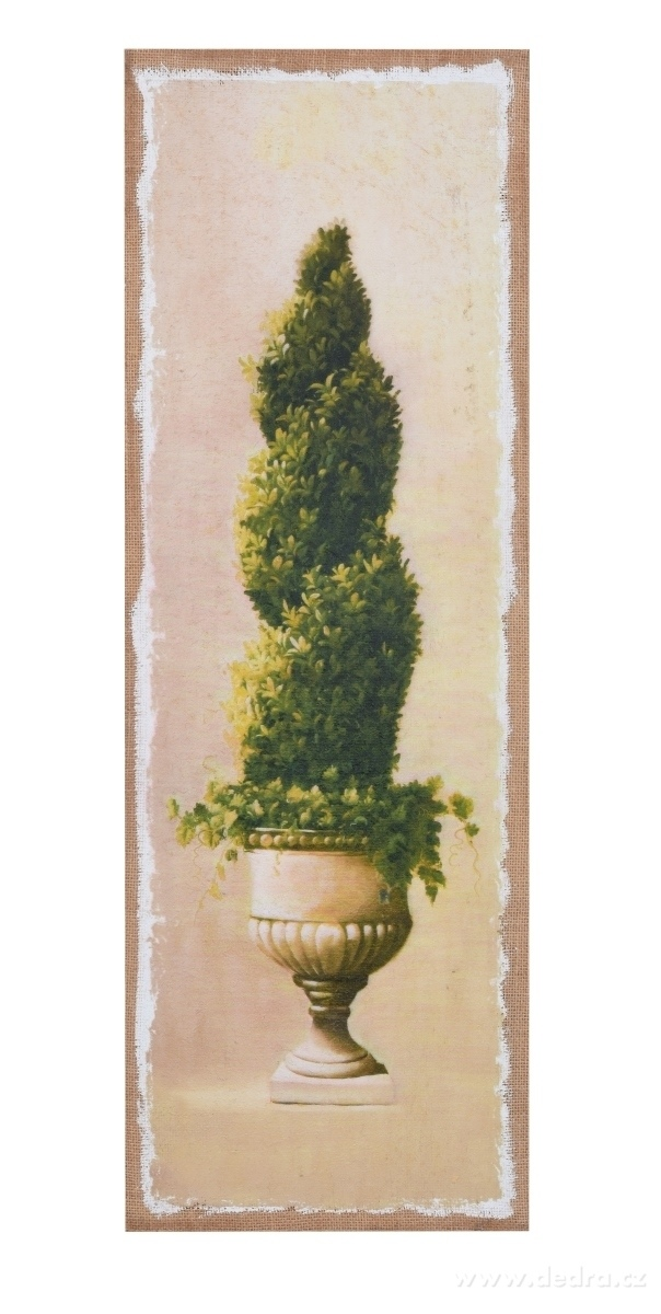 Dedra Obraz na jutovém plátně Buxus kroucený