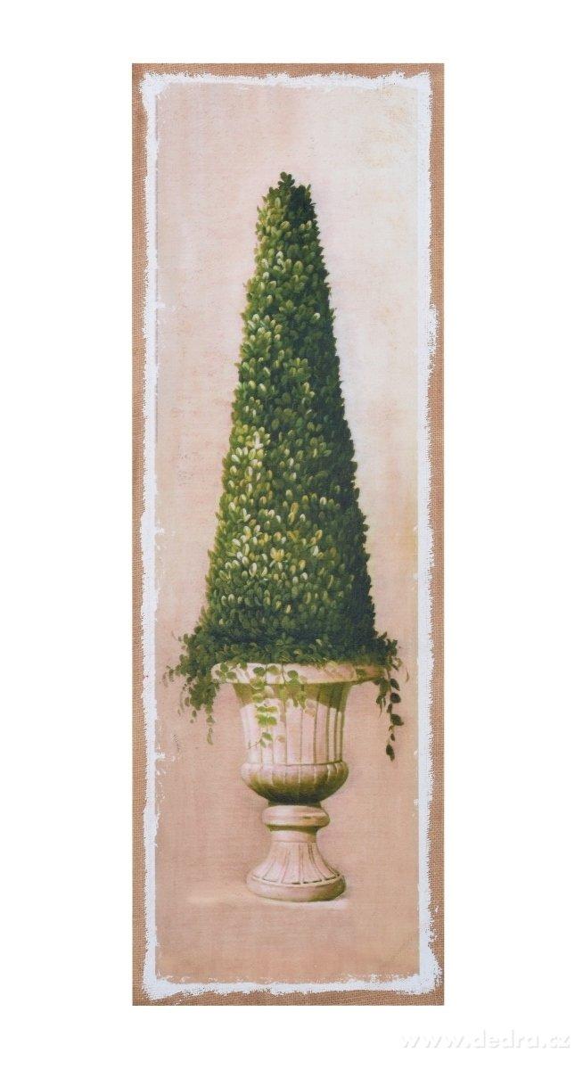 Dedra Obraz na jutovém plátně Buxus homole